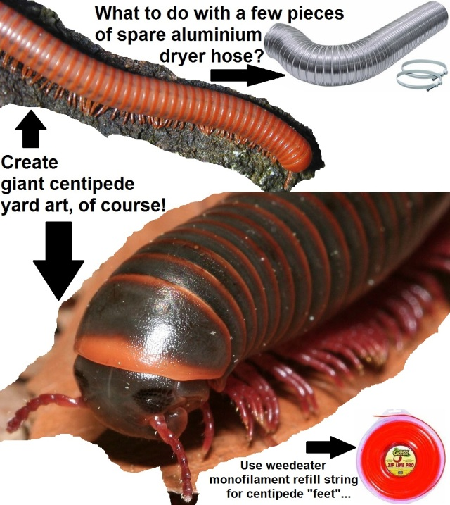 Giant-centipede-yard-art